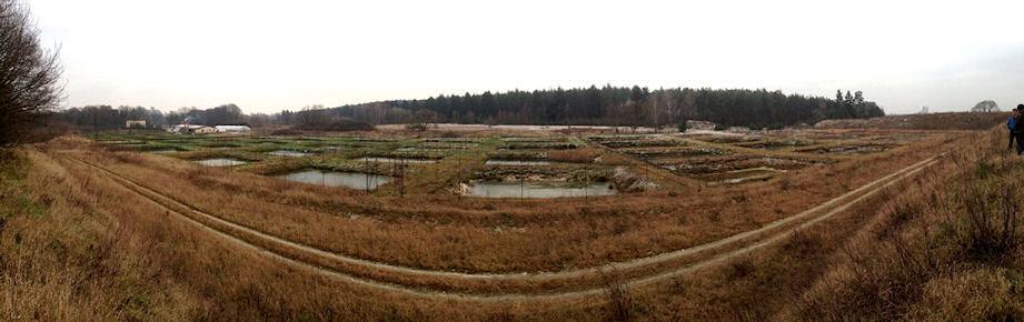 view-of-Yoshikigoi-farm